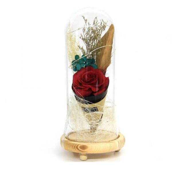 Özel Tasarım Kırmızı Güllü Led Işıklı Fanus Sevgilier Günü Hediye